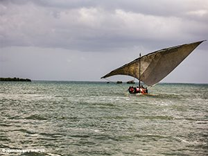 © James Morgan/ WWF-US Fishing Boat sailing PSEP Mozambique