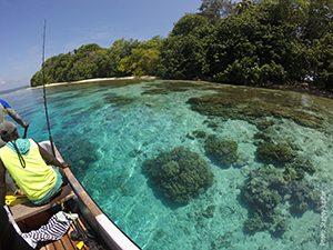 Western Province Reef, Solomon Island, Stacy Jupiter
